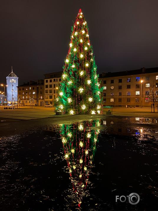 Ziemas skats pilsētā ar egli