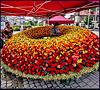 Rožu svētki Tukumā